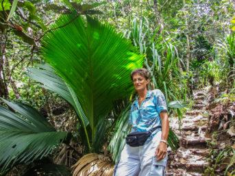 Landschaftsvielfalt auf Mahé