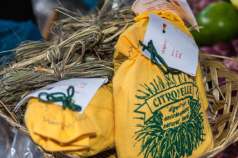 getrocknetes Zitronengras als Souvenir