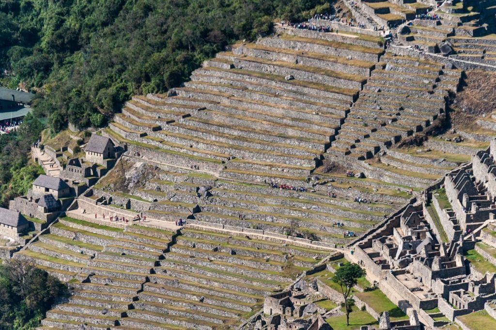 Die kunstvoll angelegten Terrassen von Machu Picchu