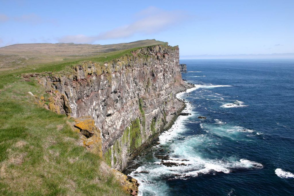 Westfjorde in Island - Vogelklippe Latrabjarg