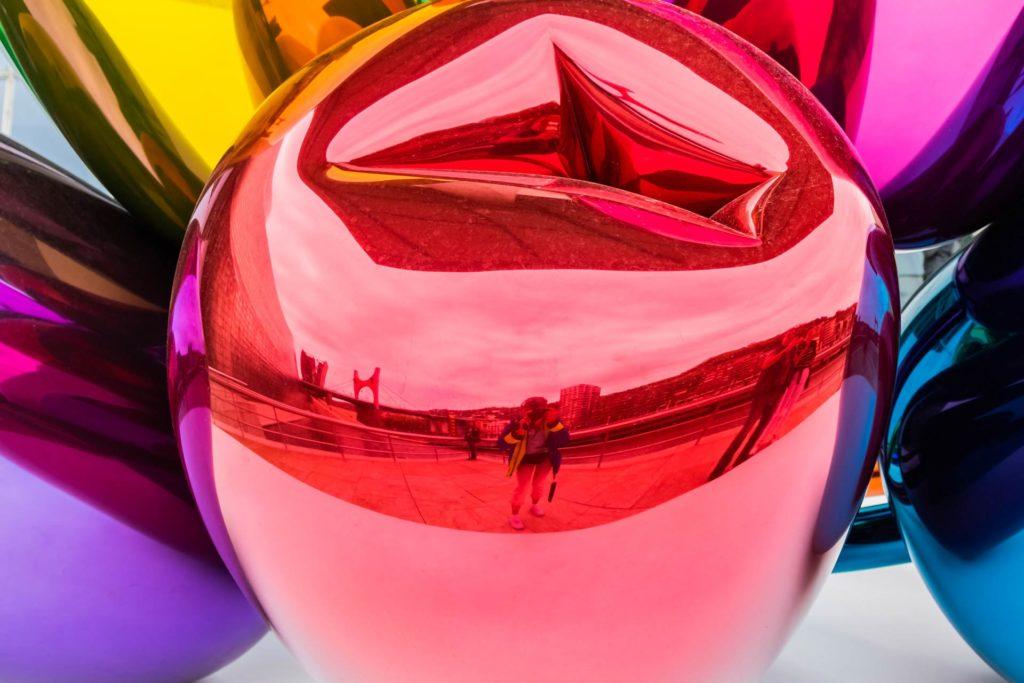 Autorin Marieluise Erhart spiegelt sich beim Fotografieren in einer der Tulpen